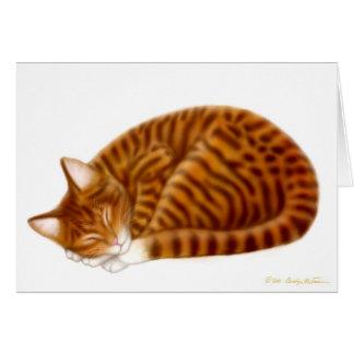 Sleeping Tabby Cat Card