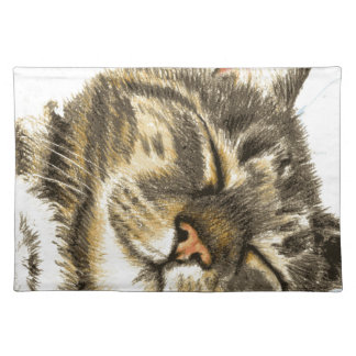 Sleeping tabby cat placemat