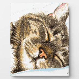 Sleeping tabby cat plaque