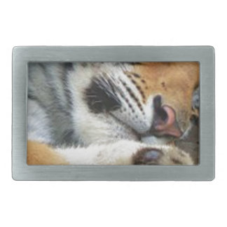 Sleeping Tiger Belt Buckle