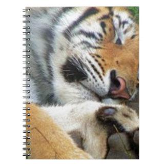 Sleeping Tiger Spiral Note Books