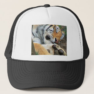Sleeping Tiger Trucker Hat