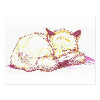 sleeping vixen postcard
