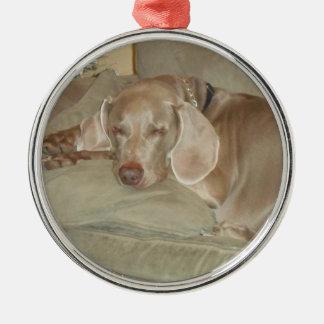 sleeping weimaraner puppy christmas ornament