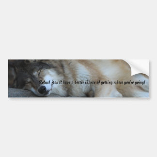Sleeping Wolf Bumper Sticker