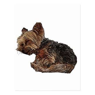 Sleeping Yorkie Postcard