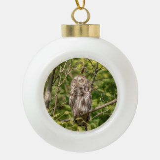 Sleepy Barred Owl Ceramic Ball Christmas Ornament