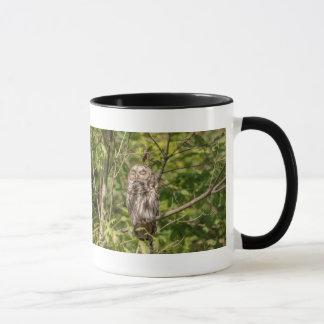 Sleepy Barred Owl Mug