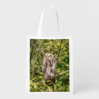 Sleepy Barred Owl Reusable Grocery Bag