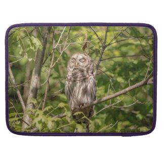 Sleepy Barred Owl Sleeve For MacBook Pro