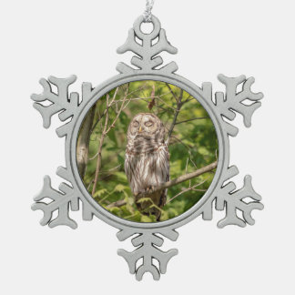 Sleepy Barred Owl Snowflake Pewter Christmas Ornament