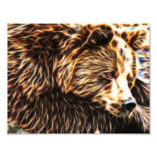 Sleepy Bear Photo Paper (11 x 8.5) by Gahr Graphic