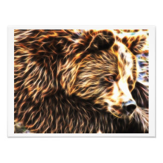 Sleepy Bear Photo Paper (16 x 12) by Gahr Graphics