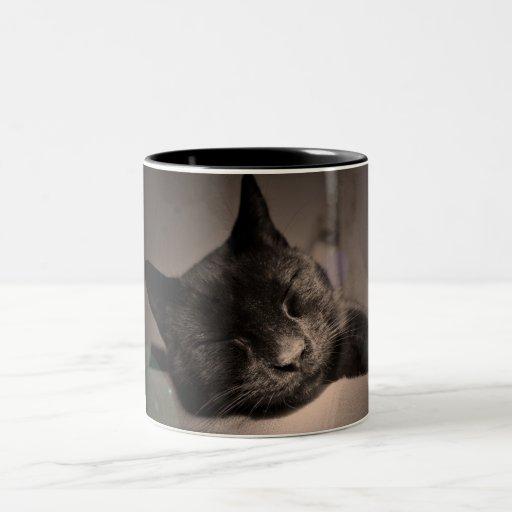 Sleepy Black Cat Mug