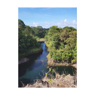 Sleepy Blue River Through Hawaiian Hillside Canvas Print