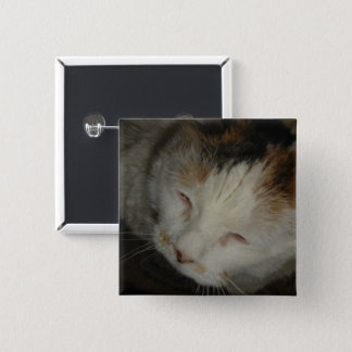 Sleepy Calico Cat 2 Inch Square Button