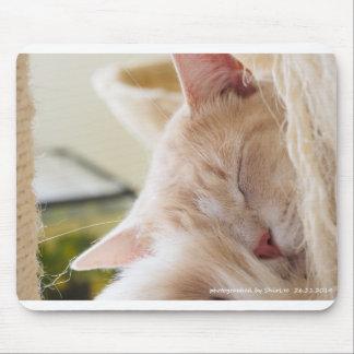 Sleepy cat 03 mouse pad