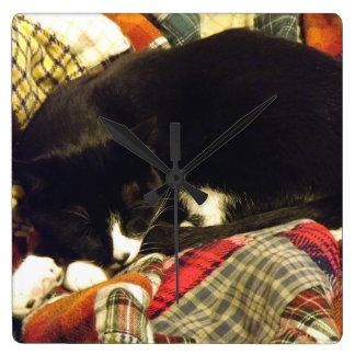 Sleepy Cat Square Wallclocks