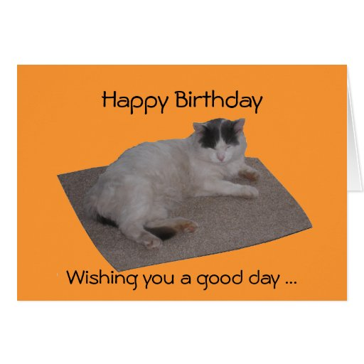 Sleepy Cat funny birthday card