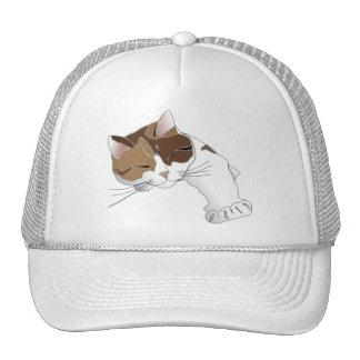 Sleepy Cat Mesh Hats