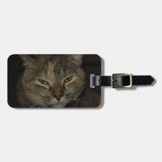 Sleepy Cat Luggage Tag