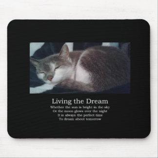 Sleepy cat mouse pad