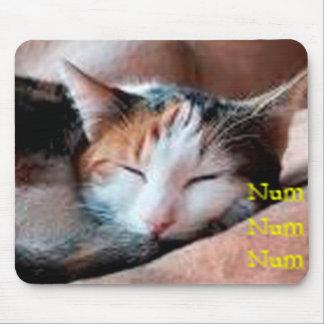 Sleepy Cat Mousepads
