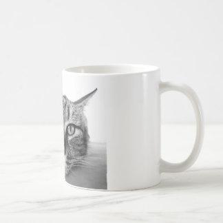 Sleepy Cat Coffee Mugs