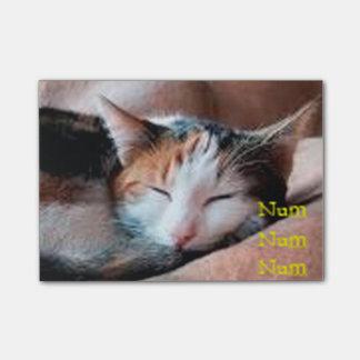 Sleepy Cat Post-it® Notes