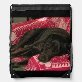 Sleepy Dog Backpack
