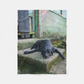 Sleepy Dog Fleece Blanket