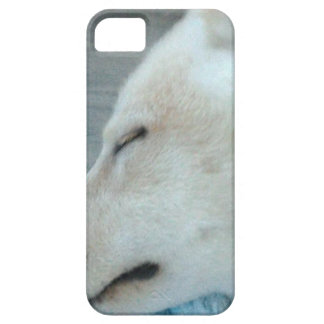 Sleepy dog iPhone 5 cover