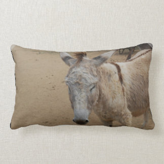 Sleepy Donkey Lumbar Pillow
