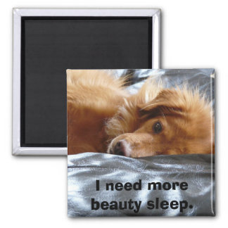 Sleepy Eyed Dog Magnet