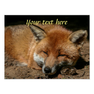 Sleepy fox poster with your own text