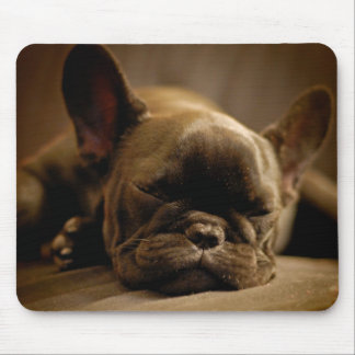 Sleepy French Bulldog Mouse Pad