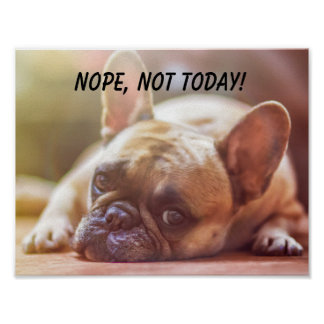 Sleepy French Bulldog Nope Not Today Poster