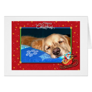 Sleepy Golden Retriever Holiday Greeting Card