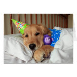 Sleepy Golden Retriever in Pyjamas Birthday