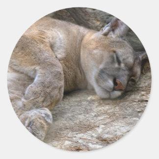 Sleepy Head Round Sticker