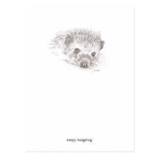 Sleepy Hedgehog Postcard