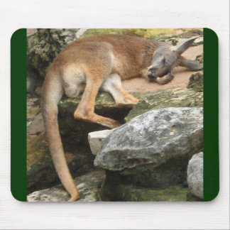 Sleepy Kangaroo Mouse Pad