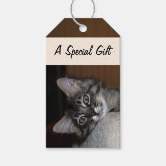 Sleepy Kimber Cat Gift Tags Pack Of Gift Tags