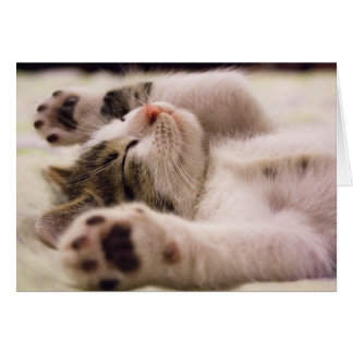 Sleepy Kitten | Paws Stretched Out Card
