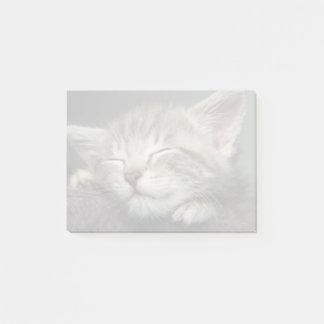 Sleepy Kitten Post-it Notes
