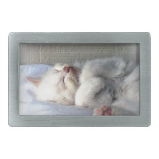 Sleepy Kitten Rectangular Belt Buckles