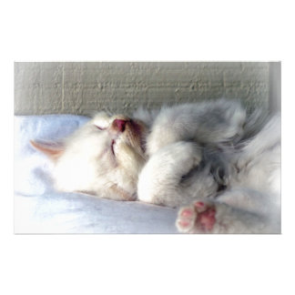 Sleepy Kitten Stationery
