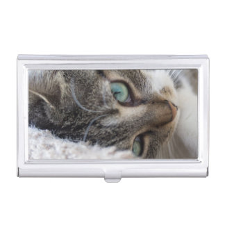 Sleepy Kitty Business Card Holder