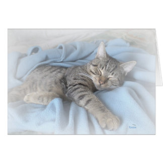 Sleepy Kitty Greeting Card