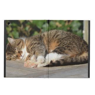 Sleepy kitty case for iPad air